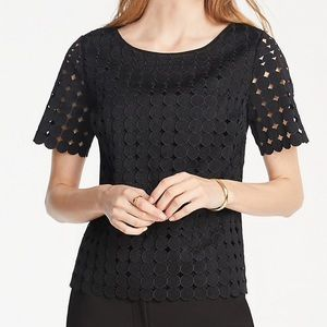 New Release Ann Taylor Lace Top